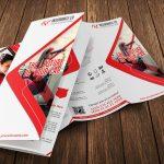 Auto Insurance Trifold Brochure