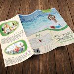 Yoga Trifold Brochure Template